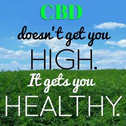 cbd doesn't get you high
