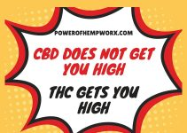 cbd does not get you high